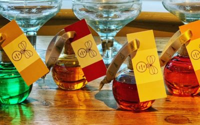 The Firsty Foal – Gin Tasting & Cocktail Sets support Charity Christmas Appeal