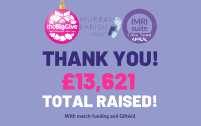 The Big Give Big Thank You!