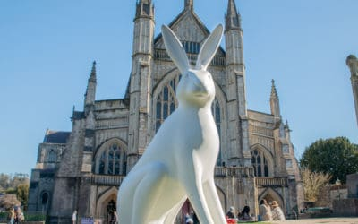 Introducing the Hares of Hampshire!