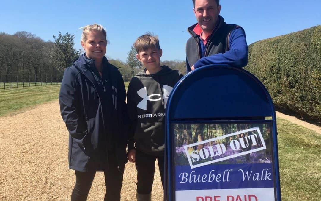 Bluebells at Holywell Estate – Photos